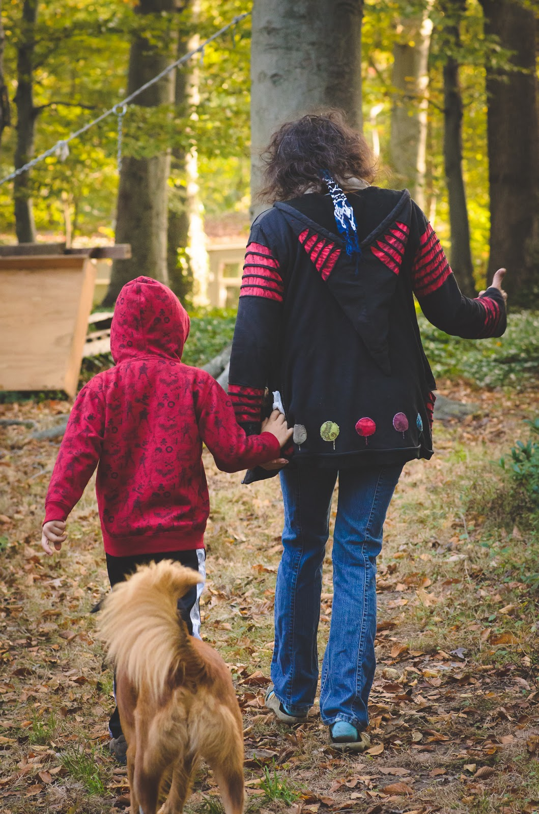 homeschooling family with dog in the woods ©Diana Sherblom Photography