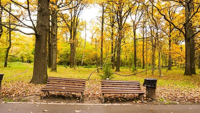 ảnh thiên nhiên mùa thu đẹp