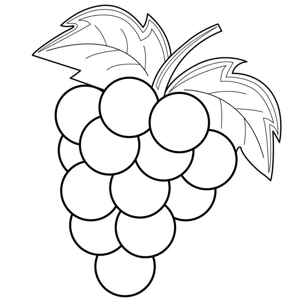 Gambar Buah Melon Kartun