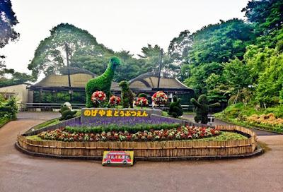 Liburan Hemat di Nogeyama Zoo Yokohama Jepang