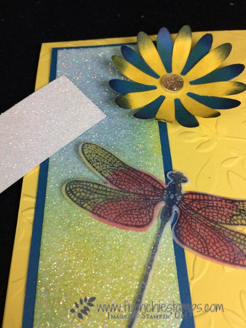 Dazzling Diamond Glimmer Paper, Brusho Glimmer paper, Daisy Pinch, Dragonfly Bundle,  Stampin'Up!, Frenchie Stamps,