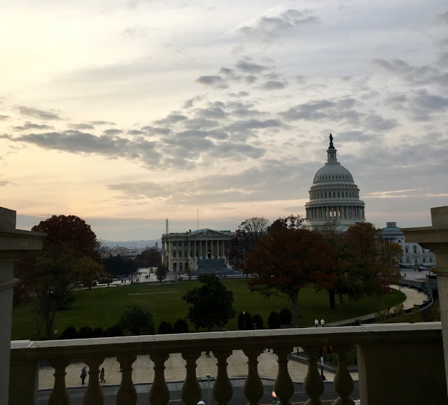 letmecrossover_blog_michele_mattos_blogger_usa_us_eua_washington_dc_house_of_cards_park_fall_winter_capitol_brasileira_brazillian_memorial_library_of_congress