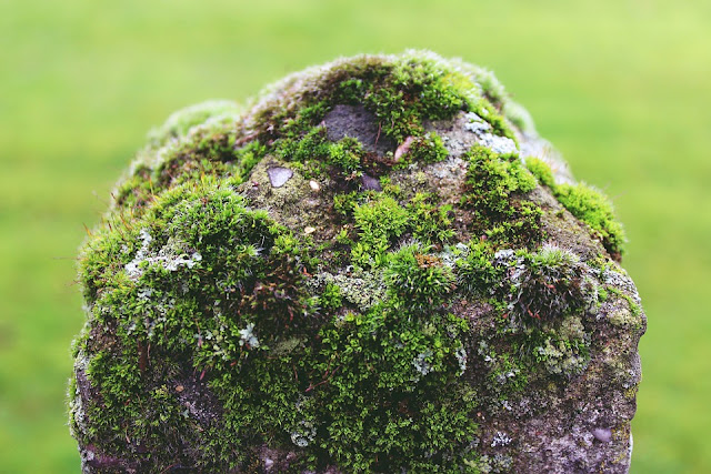 Mengapa Batu Yang Kokoh Bisa Rapuh?   Hanifah
