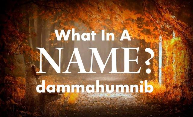 Cara Memilih Nama Dan Domain Blog