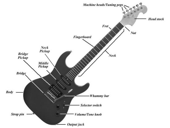 The Picture Below Will Help Explain Different Parts Of A Guitar Strings And Notes