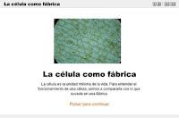 http://www.santillanaenred.cl/hipertextos/2009/naturaleza/libro8/unidad1/recursos/a_celulafabrica/es_animacion.html