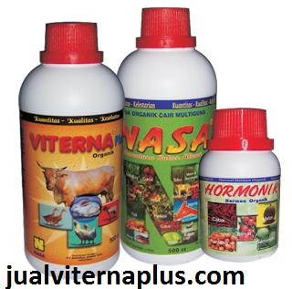 produk untuk mempercepat penggemukan hewan ternak