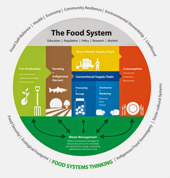 Sustainable Food System Chart