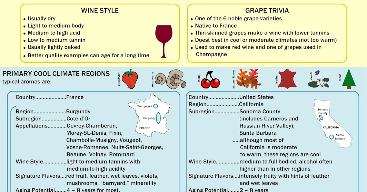 pinot noir cheat sheet Rough cheat sheet for blind tastings - the fastest way to make you look like   semi-translucent colour, not unlike pinot noir nose: sweet fruit,.