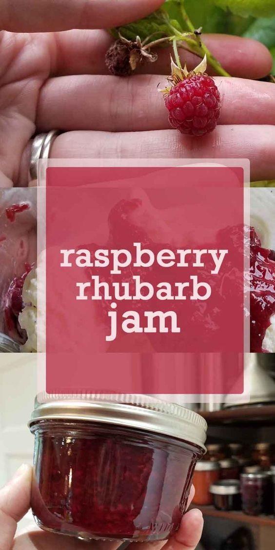 Raspberry Rhubarb Jam Ingredients
