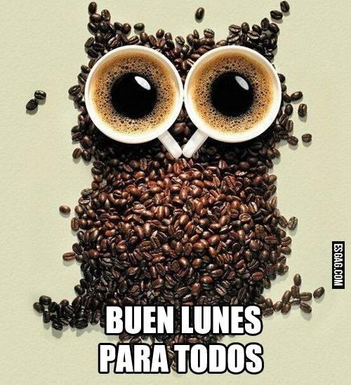 búho hecho con granos y dos tazas de café