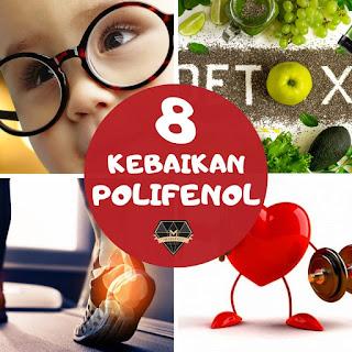 8 Kebaikan Polifenol Untuk Kesihatan
