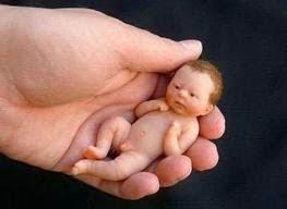 Image result for kelahiran pramatang images