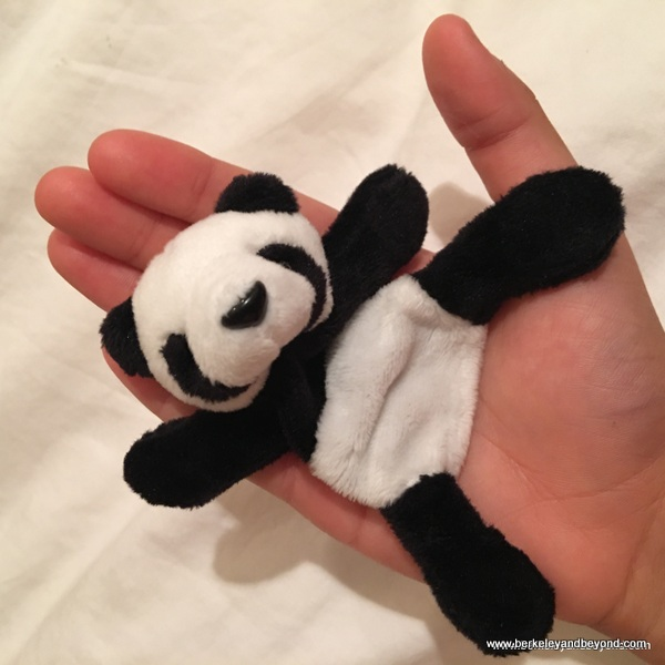 panda souvenir from Chengdu Research Base of Giant Panda Breeding in Chengdu, China
