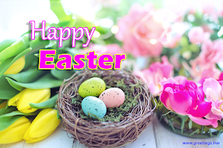 Easter greetings 2019 Easter Eggs flowers