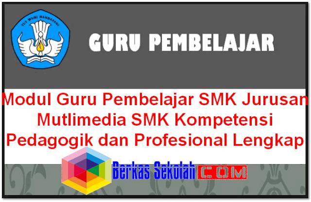 Modul Guru Pembelajar SMK Jurusan Mutlimedia SMK Kompetensi Pedagogik dan Profesional Lengkap