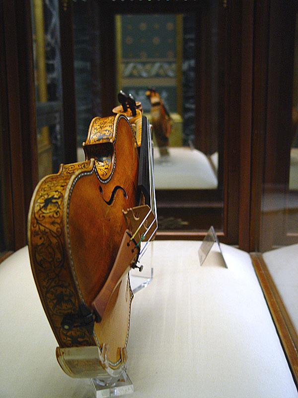 fine træ violin