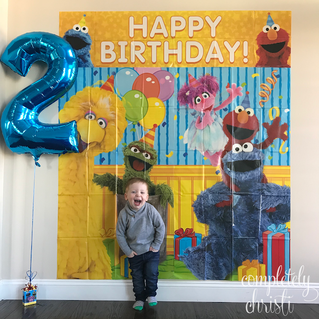 Sesame Street birthday party decor 2nd birthday photo booth