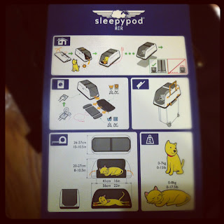 Sleepypod instructions