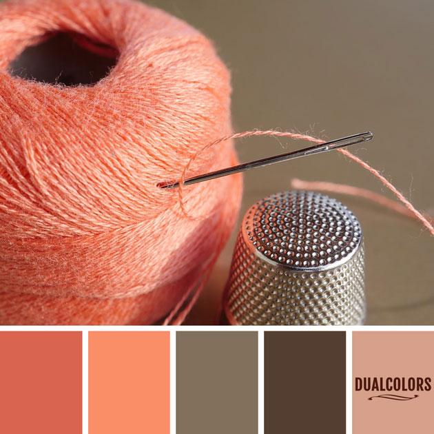 color_paleta_101