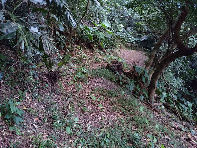 前川樋川と前川民間防空壕の遊歩道の写真