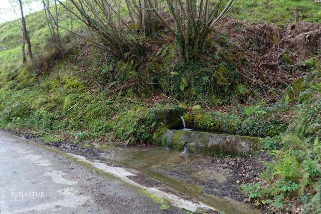 Fuente en La Canal - Piloña