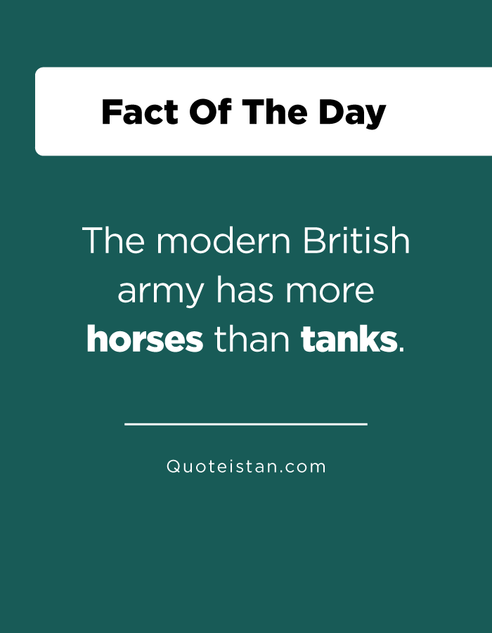 The modern British army has more horses than tanks.