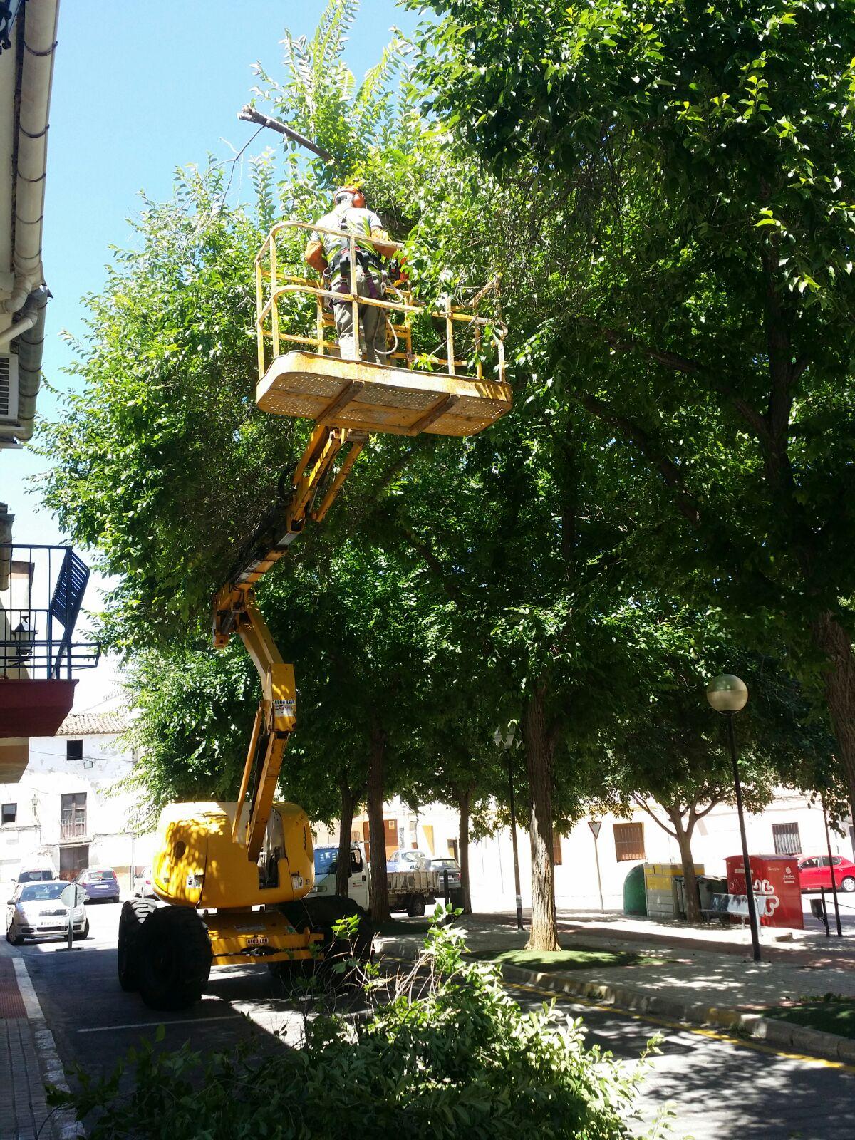 Noticias de Xàtiva y sus comarcas. El blog de un locutor local ...