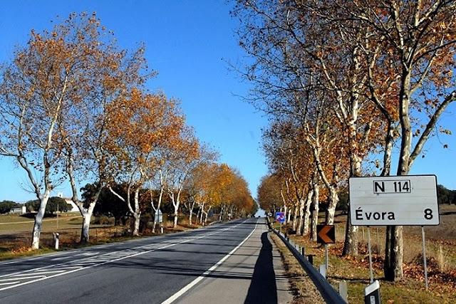 Estrada para Évora