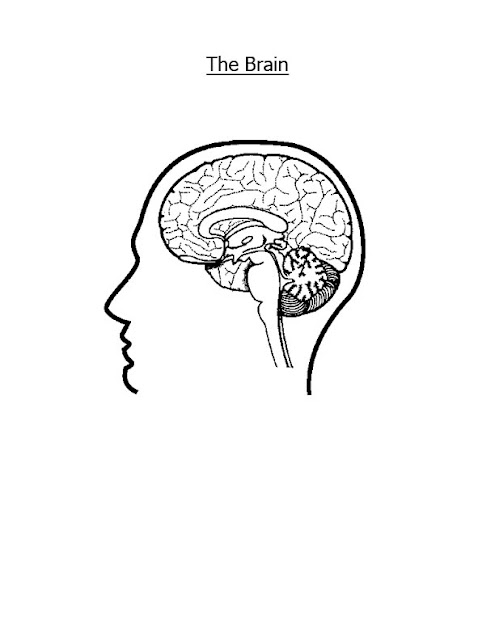 Brain Jack Image: Brain Coloring Pages