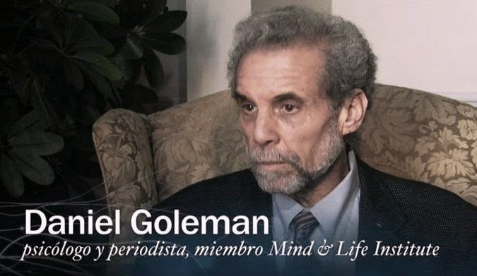Emotional Intelligence/ EQ Menurut Daniel Goleman