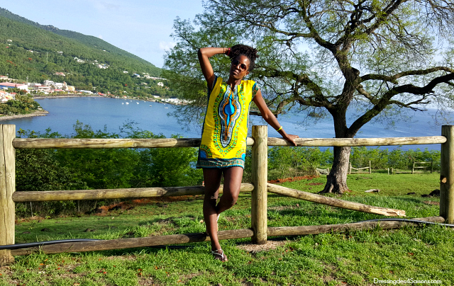 Dressing-des-4-Saisons-Dashiki-t-shirt-lookbook-rocher-plage-leroux-guadeloupe-microlocks-blogueuse-mode