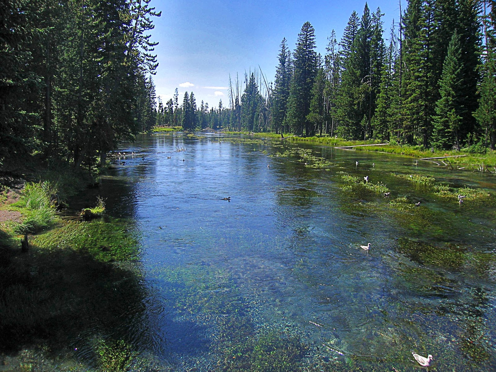 Idaho Montana Pioneer Mountains Hebgen Lake Yellowstone Island Park Big Spring Lemhi Beaverhead geology travel trip copyright RocDocTravel.com