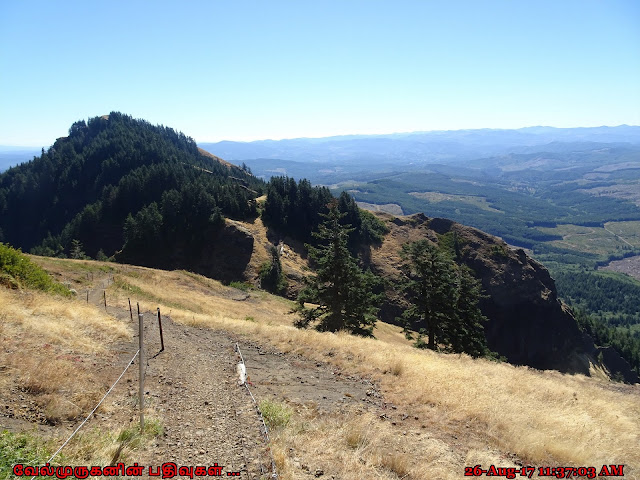 Oregon Saddle Mountain