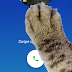 Google Phone Has 'Paw Mode' Easter Egg In Version 9.0