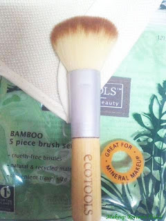 Ecotools Mineral Powder Brush Review