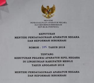 SK KemenpanRB tentang Rincian Kebutuhan CPNS Kab Mesuji