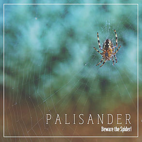 Palisander - Beware the Spider!