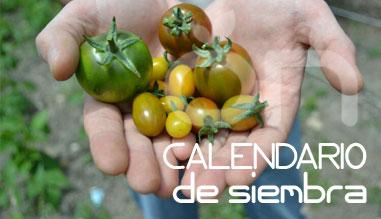calendario-siembra