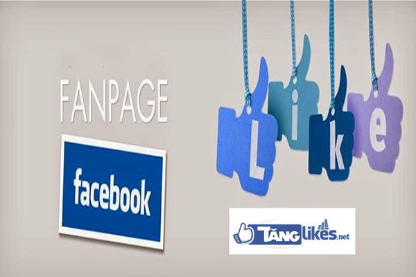 cach tang like page facebook