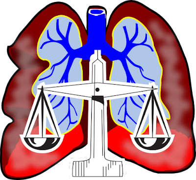 A Closer Look at Mesothelioma and Michigan Lawyers
