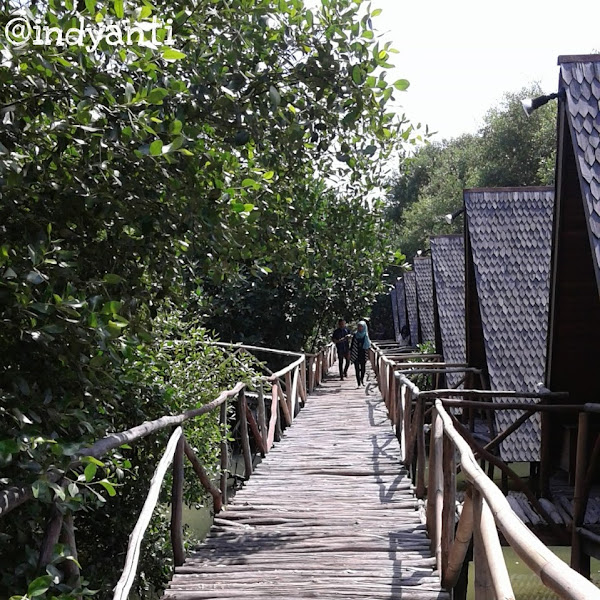 Petualangan Kecil di Taman Wisata Alam Angke