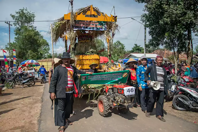 Festival panen padi Lampung timur