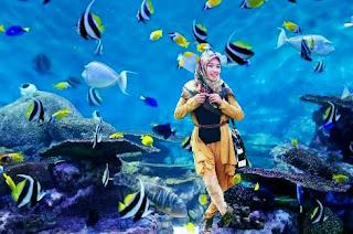 Cara Edit Foto Orang Di Dalam Laut atau Air di Android