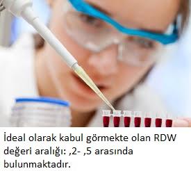 RDW NEDİR