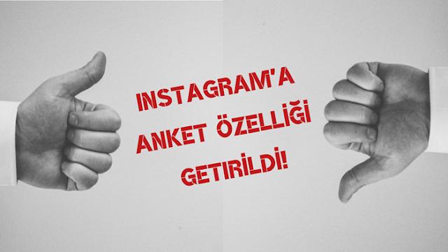 Instagram'a Anket özelliği getirildi!,adana haberleri,adana,manşet adana