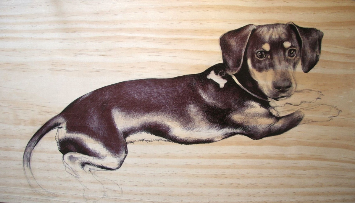 03-Dachshund-00-Martina-Billi-Recycled-Wooden-Planks-Used-to-Draw-Animals-www-designstack-co