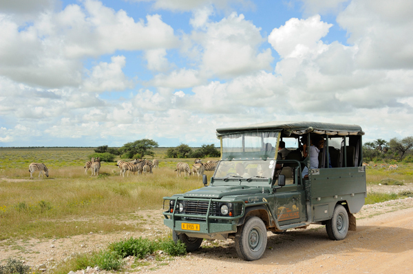 Taleni Etosha Village Namibia game drives