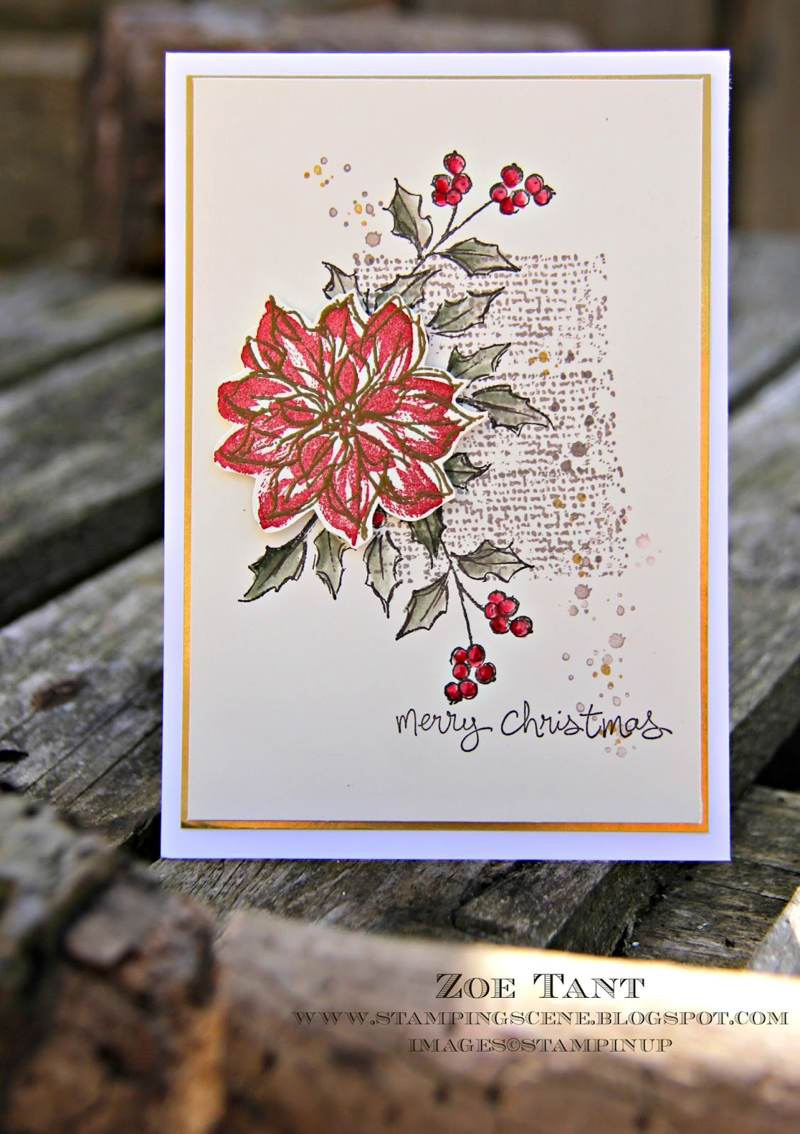 christmas card club poinsettias or angels