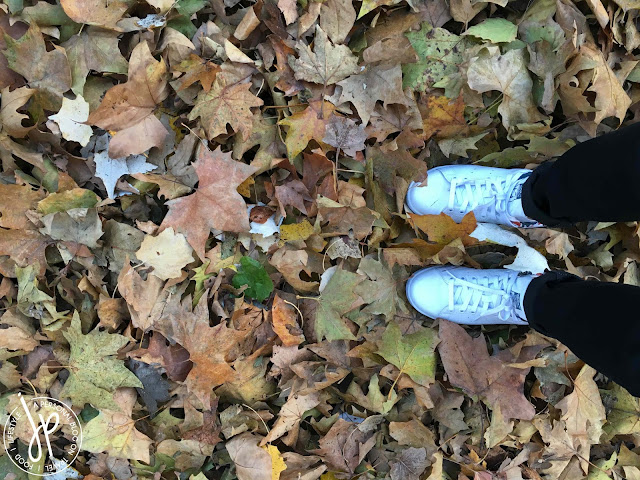 dried maple leaves, sneakers